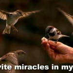 Positive visualization - miracles in my life image